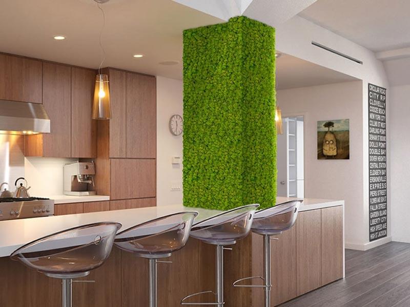 Beste Hang eens mos aan uw muur | Innovatief.be TF-86