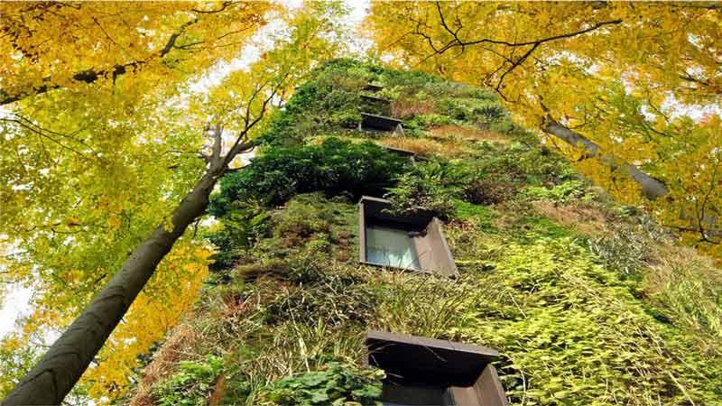 Goedkoop Alternatief Wonen : Wonen we binnenkort in boomhuizen innovatief be